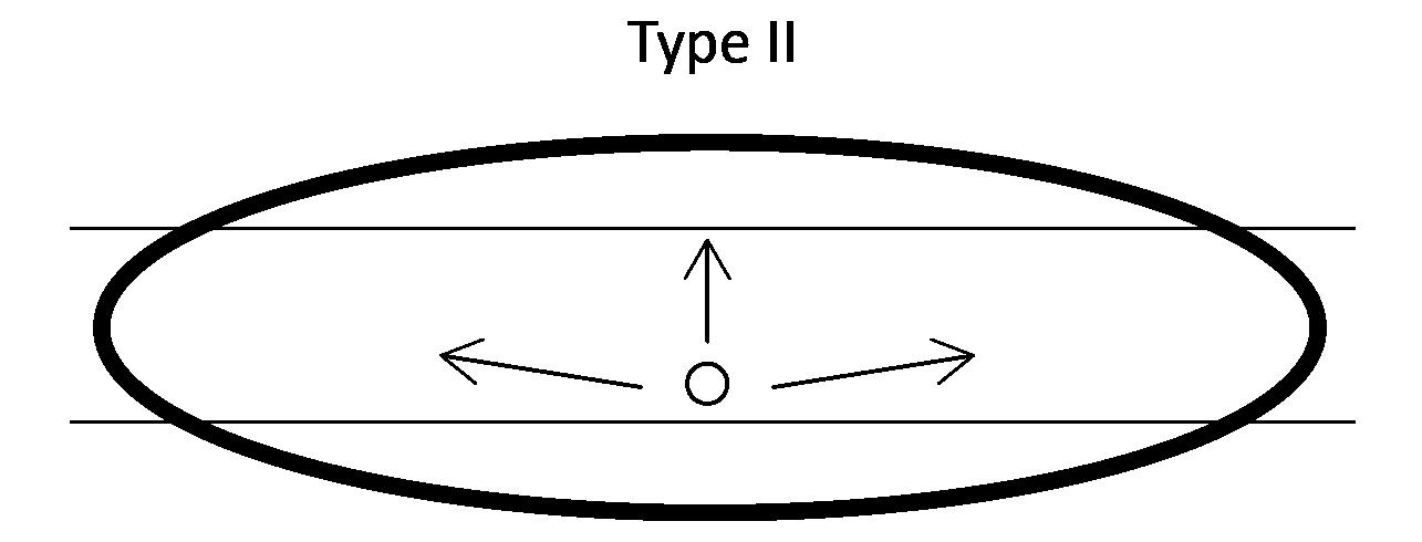 ORCA_graphics_type-II
